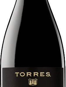 Torres - Mas La Plana 2013 75cl Bottle