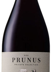 Prunus - Tinto 2017 75cl Bottle